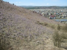 Остров, Амбон и склон г. Улан-Бас весной 2013 г.