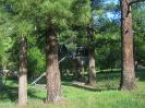 Остатки былого Ямаровского курорта