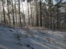 Лес у подножия главного останца